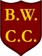 Ballinger Waggoners Cricket Club